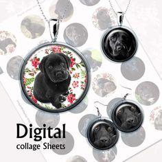 Dogs. Black Labrador. Digital Collage Sheet  от MyMidnightMoon