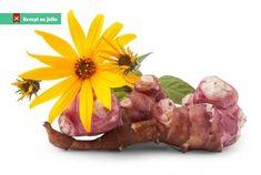 Topinambury jsou léčivým darem z přírody Severní Ameriky ... Feta, America