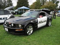 Danville Police uses a customized Ford Mustang GT, what they call 'Youth Police Vehicle'.