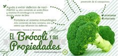Propiedades del brócoli, anticancerígenas, propiedades diuréticas, fuente de hierro y beta caroteno, previene la anemia, ideal para la miopía. El Brócoli