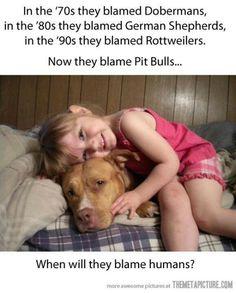 Pitbulls r loving and loyal. People r always the problem