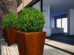 Eine Empfehlung für Haus und Garten sind Pflanzgefäße aus Cortenstahl, die mit ihrer rostigen Optik ein besonderes Ambiente schaffen. www.baustofflust.de
