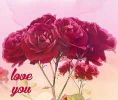 Enjoy It, Highlights, My Arts, Love You, Rose, Artist, Flowers, Plants, Te Amo