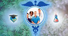 Mecial school no ECS... Survey of the Endocannabinoid System in Medical Schools