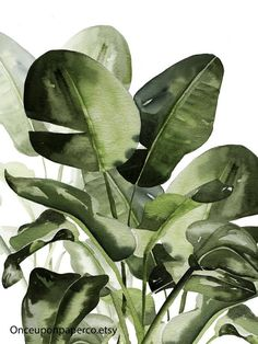Philodendron Leaf Printable for the home. Our are and simply matched in watercolor. Leaf Prints, Wall Art Prints, Banana Print, Art Courses, Plant Art, Nature Prints, Art Mural, Leaf Art, Botanical Prints