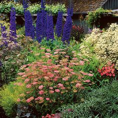 Step 1: Pick plants for a cottage effect - How to Grow a Cottage Garden - Sunset