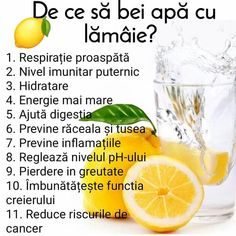 Healthy Drinks, Healthy Recipes, Eat Smart, Loose Weight, Natural Medicine, Beauty Care, Metabolism, Good To Know, Health And Beauty