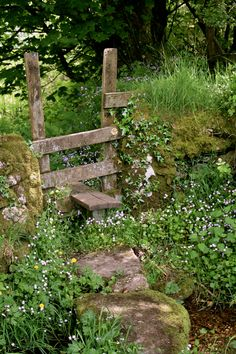 Dartmoor Stile by Sue Sunderland