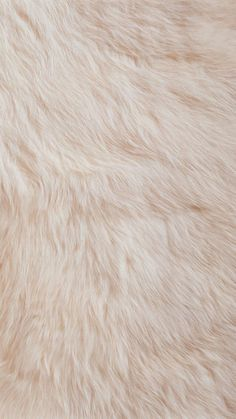 Cream Fur Texture - Tap to see more fluffy wallpapers! - @mobile9