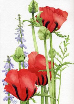 Red Poppies Painting by Linda Hoover - Red Poppies Fine Art Prints and Posters for Sale