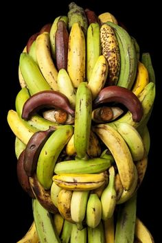 The Arcimboldo Series by Klaus Enrique