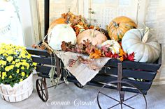 Common Ground: Pumpkin Filled Goat Cart