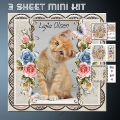Sweet Kitty by Lajla Olsen Cardfront with decoupageinsertgiftcard and a blank sentiment tag.Enjoy)