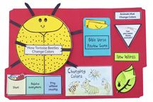 lots of insect lapbook ideas - easy to adapt