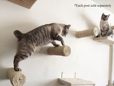 Etsy の Floating Sisal Post Step by CatastrophiCreations