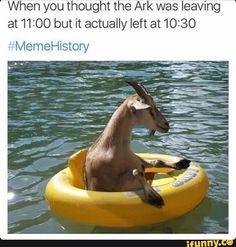 fuckyou, memes, cringe, dank, memehistory
