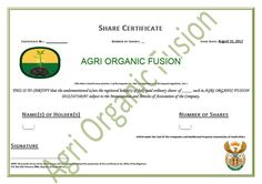 Our Shares Certificate