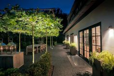 Roof terrace with concrete tiles and shaped trees. Lighting is applied under the trees by means of uplighters. On the ville with use of wall fixtures and various movable lamps by Royal Botania.