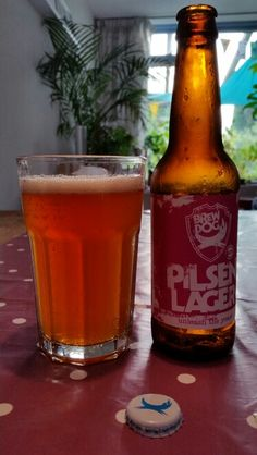 Pilsen Lager BrewDog // 6/10 // van 4-pack Unleash the Yeast