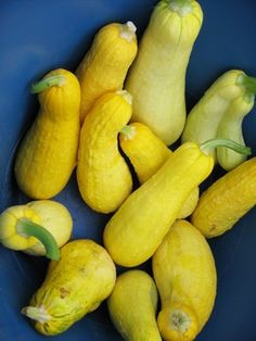 Turn this popular summer vegetable into a casserole for dinner or a unique dessert!