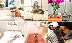 Meghan Markle has been showing off her Toronto home in Instagram, revealing her love of mid-century modern furniture, a white colour palette, fresh peonies and expensive scented candles.