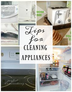 As homemakers we are responsible for so many jobs around the home, and cleaning appliances is a big one. So here are a few easy tips for getting the job done. Just click on the links to read the full posts! Baking soda is an easy and frugal way to clean glass topped stoves. From …