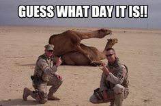 Guess what day