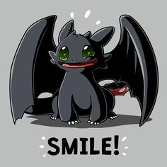 Smile! t-shirt How to Train Your Dragon TeeTurtle