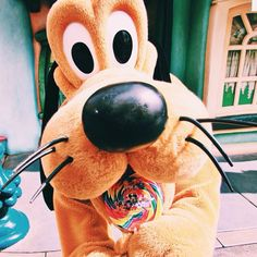 Pluto in Toontown, Disneyland Walt Disney World, Disney Pixar, Disney Characters, Disney Mickey, Mickey Mouse, Disneyland Ca, Disney Parque, Disney Aesthetic, Cute Disney