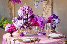 magnificent purples and pinks