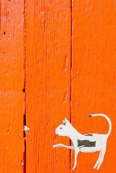 Diy Canvas, Canvas Wall Art, Orange Rooms, Orange Crush, Deco, Orange Color, Colour, Cat Art, Rainbow Colors