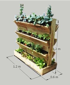 Vertical Gardening means that you don't need a BIG garden area with lots of sun to have a successful garden. All you need is about 1200 x 600mm of area. By having a MULTI-LEVEL garden you can literally stack one garden on top of another. In a Super Planter © of just 1200 x 600 x 1200 you actually get over 11 lineal meters of Garden to plant.