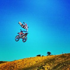 Freestyle # Freeride