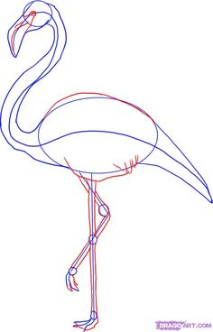 how-to-draw-a-flamingo-step-3_1_000000001256_5.jpg (731×1141)