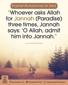 And also ask for protection from the hellfire 3x Insha'Allah. #Alhumdulillah #For #Islam #Muslim