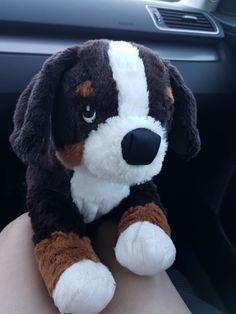 Hunden finns att köpa på Ikea ❤