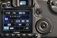 Best camera settings for macro photography: shooting mode
