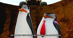 Penguins Of Madagascar, Smile And Wave, April O'neil, Dreamworks, Tumblr, Boys, Penguins, Funny Humour, Baby Boys