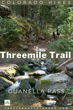 Threemile Creek Trail is a moderate hike through the forest with numerous creek crossings as you hike up into the Mt. Evans Wilderness. #hike #coloradotrails