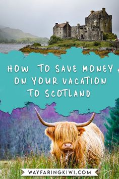 Are you traveling to Scotland? Read my travel Scotland on a budget guide before you go. You'll learn how to book cheap flights to Scotland, how to save on Scotland accommodation, and what the best options for budget transportation in Scotland. Don't forge Europe Travel Guide, Travel Guides, Travel Destinations, Budget Travel, Scotland Travel, Ireland Travel, Edinburgh Scotland, Visiting Scotland, Scotland Trip