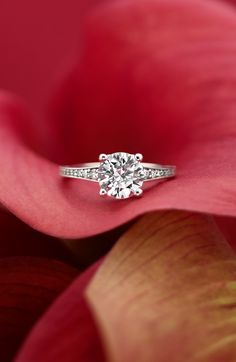 Timelessly elegant. Gorgeous solitaire engagement ring. Can't get enough of this wedding ring style.