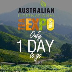 One day to go! Don't forget to come down to the Geelong waterfront this weekend and grab some of our matcha mylk from @feel_good_foods at the Australian Tea Expo. Regram from @australianteaexpo. #rebelkitchen #coconutmylk #mylk #matcha #tea #expo #geelong #cunninghampier #vegan #paleo by rebel_kitchenau http://ift.tt/1JtS0vo