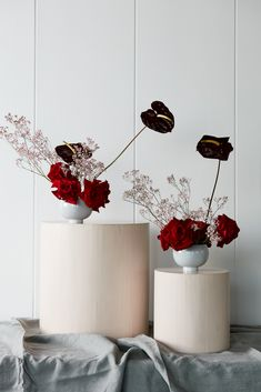 Our own Small Theodores in Haze Grey pair with passionate blooms French Flowers, Exotic Flowers, Modern Floral Arrangements, Flower Arrangements, Floral Wedding, Wedding Flowers, Vertical Garden Plants, Flower Installation, Floral Artwork