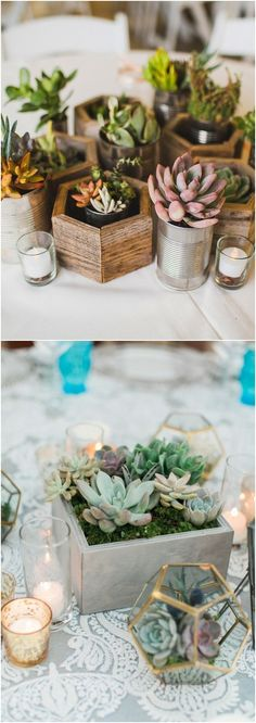 Geometric potted succulents wedding centerpiece #weddings #weddingcenterpieces #weddingideas