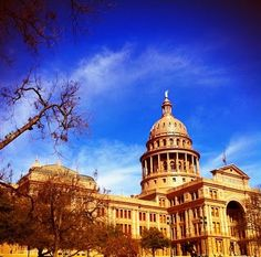 Texas State Capitol, 2nd in total size only to the Natl. Capitol building in D.C., you can enjoy a tour, a picnic on the grounds, as well as an amazing view of downtown Austin.