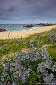 Meneham beach in Bretagne_ France, Brittany http://brittanyholidayguide.com/brittany-best-beaches.html