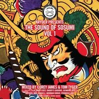 Kryder Presents The Sound Of Sosumi Vol 1 - Mixed By Tom Tyger & Corey James [FREE DOWNLOAD] by Sosumi Records on SoundCloud