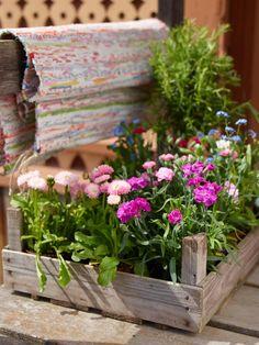 True & Sania: Gardening Time