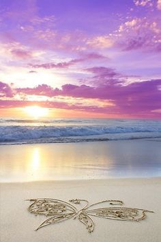 butterfly rainbow sunrise at the ocean Beautiful Sunset, Beautiful Beaches, Beautiful World, I Love The Beach, Jolie Photo, Beach Scenes, Ocean Beach, Sunset Beach, Pretty Pictures