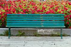 View top-quality stock photos of Empty Bench. Find premium, high-resolution stock photography at Getty Images. Outdoor Furniture, Outdoor Decor, Empty, Bench, Stock Photos, Photography, Image, Home Decor, Photograph